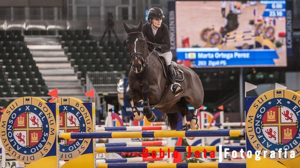 Fotografía de caballos, salto
