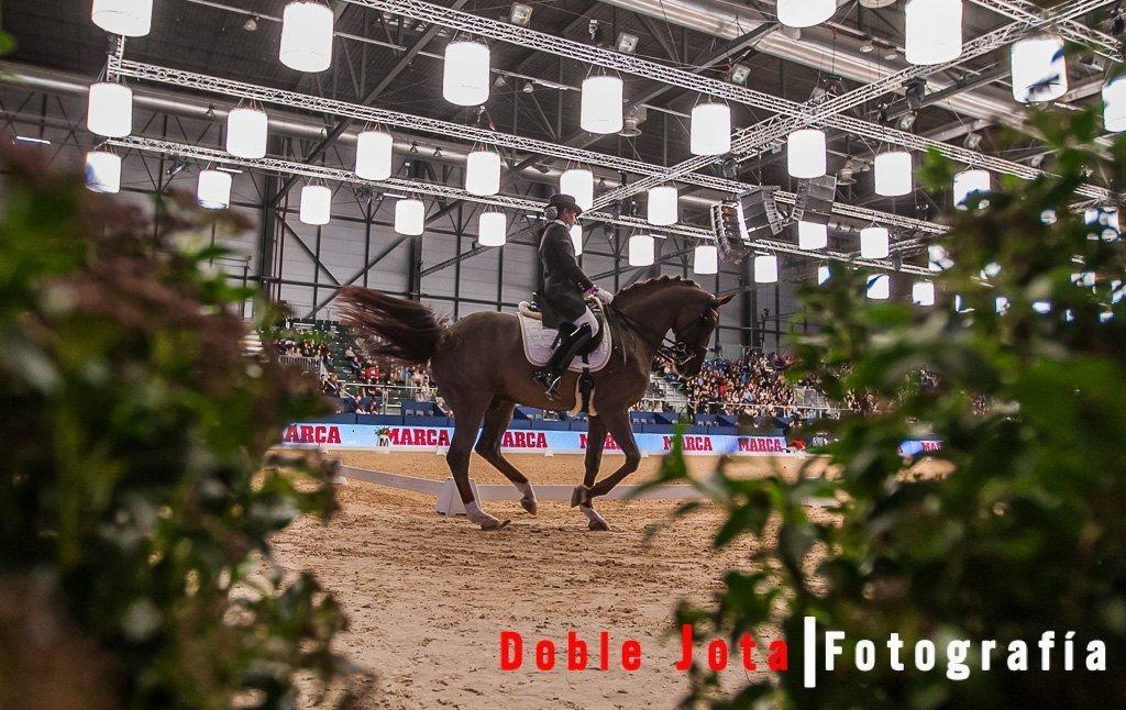 Fotografía de caballos, Doma clásica