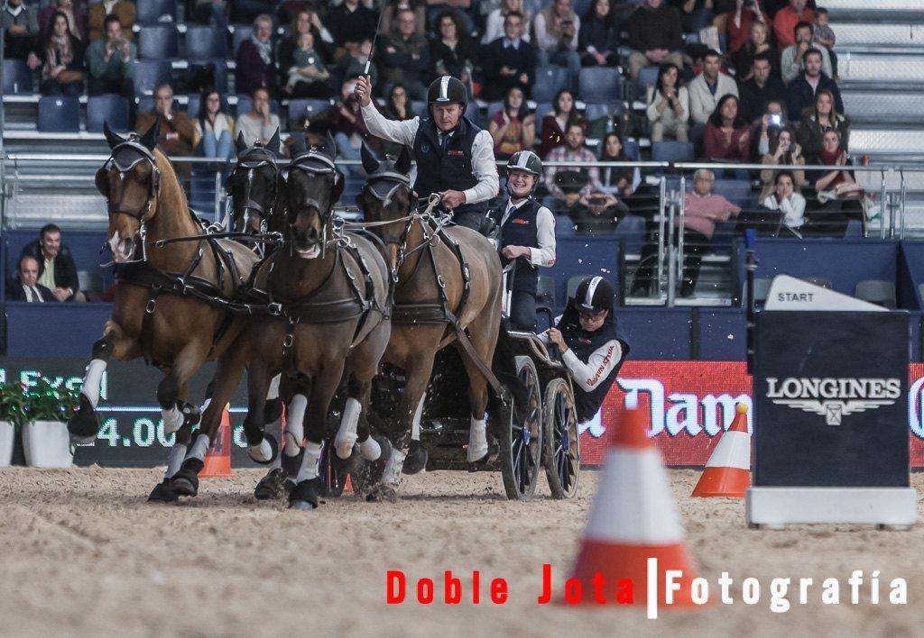 Fotografía de caballos, enganches